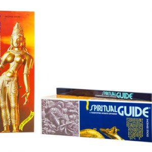 Encens Spiritual Guide Naturel - Boîte de 8 bâtons